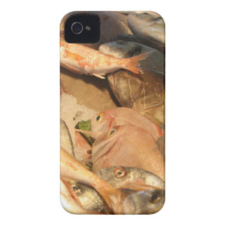 Variety of Fresh Fish Seafood on Ice iPhone 4 Case-Mate Cases