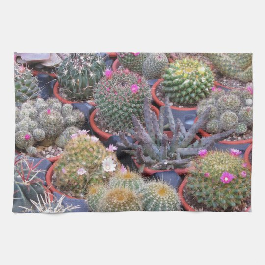 Variety of small cactus background hand towels