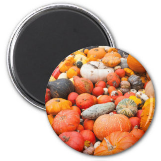 Variety of squash for sale, Germany 2 Inch Round Magnet