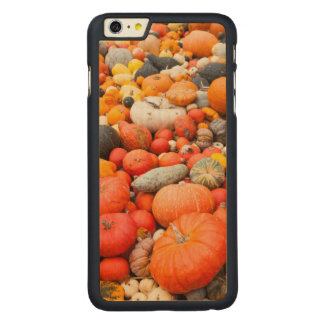 Variety of squash for sale, Germany Carved® Maple iPhone 6 Plus Case