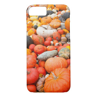 Variety of squash for sale, Germany iPhone 7 Case