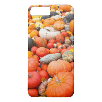Variety of squash for sale, Germany iPhone 7 Plus Case