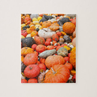 Variety of squash for sale, Germany Jigsaw Puzzle