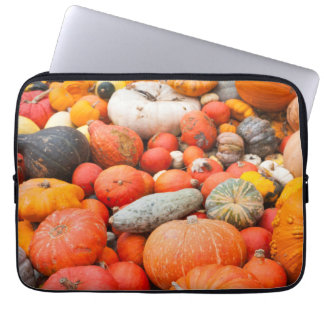 Variety of squash for sale, Germany Laptop Sleeve