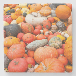 Variety of squash for sale, Germany Stone Coaster
