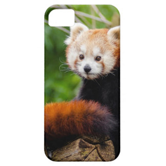 Various objects with a red panda iPhone 5 case