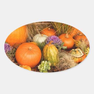 Various pumpkins oval sticker