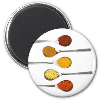 Various seasoning spices on metal spoons magnet