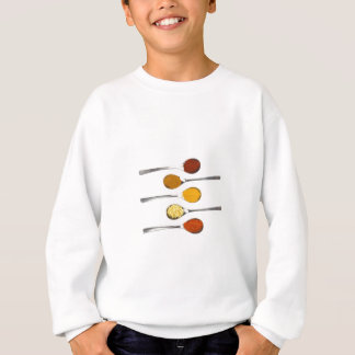Various seasoning spices on metal spoons sweatshirt