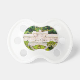 Vatican painting pacifier