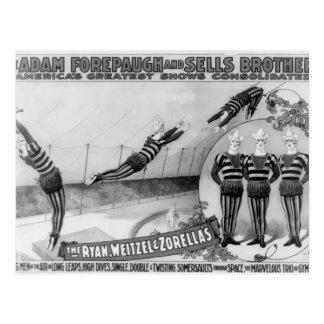 Vaudeville, Circus shows Postcard
