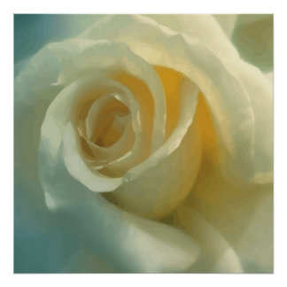 Vector White Rose Poster