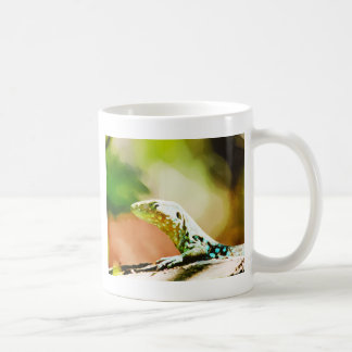 Vectored Lizard From Aruba Coffee Mug