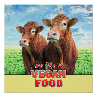 VEGAN FOOD we like it Poster
