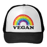 Vegan Rainbow Hats