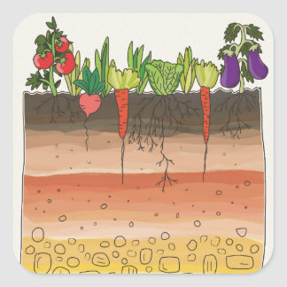 Vegetable garden soil earth layers nature art square sticker