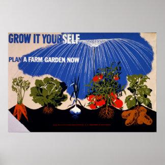 Vegetable Garden Vintage Poster