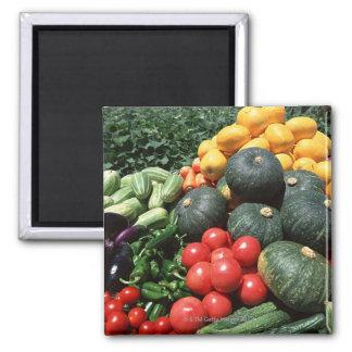 Vegetables 2 square magnet