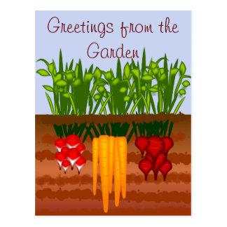 Veggie Garden Postcard