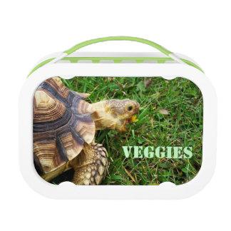 """Veggies"" Vegetarian Tortoise and Dandelion Lunch Box"
