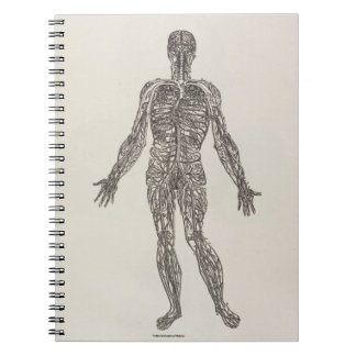 Veins and Arteries Note Book