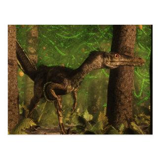 Velociraptor dinosaur in the forest postcard