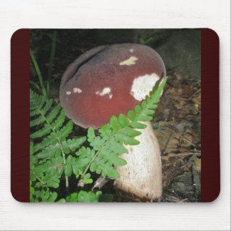 Velvet Mushroom Mousepad