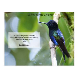 Velvet-purple Coronet Postcard
