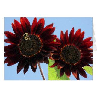 Velvet Queen Sunflowers Card