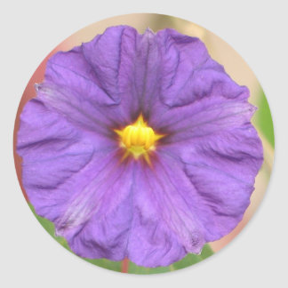 Velvet Robe Flower Classic Round Sticker