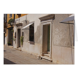 Venetian Dog Card