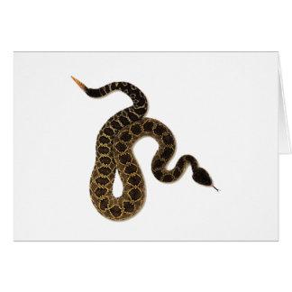 Venomous Bites Card