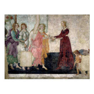 Venus and the Graces Postcard