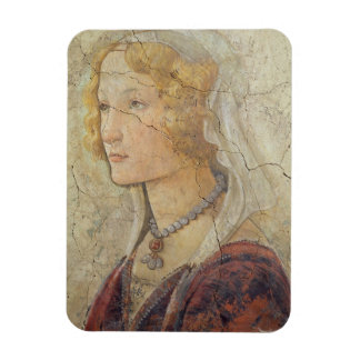 Venus and the Three Graces Offering Gifts to a Gir Rectangular Photo Magnet