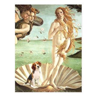 Venus-Beagle1 Postcard