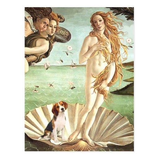 Venus-Beagle1 Post Card