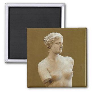 Venus de Milo Square Magnet