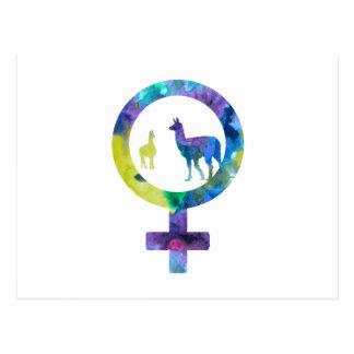 Venus Llamas Postcard