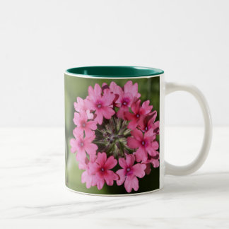 Verbena Blossom Two-Tone Coffee Mug