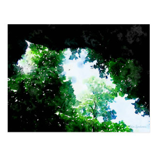 Verdant Foliage Postcard
