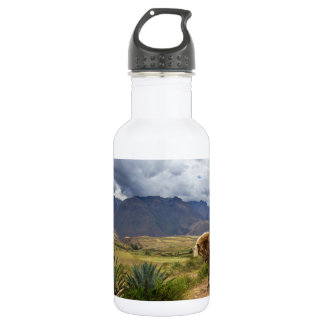 Verdant Sacred Valley Horse 532 Ml Water Bottle