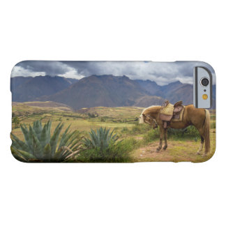 Verdant Sacred Valley Horse Barely There iPhone 6 Case