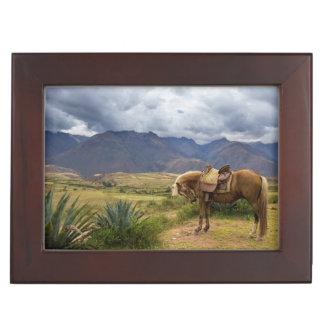 Verdant Sacred Valley Horse Keepsake Box