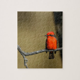 Vermillion Flycatcher Accessories and Gifts Puzzle