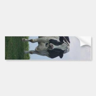 Vermont  Black and White Dairy Cow Bumper Sticker