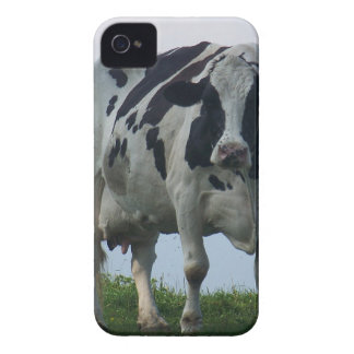 Vermont  Black and White Dairy Cow iPhone 4 Case-Mate Case