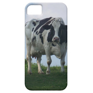Vermont  Black and White Dairy Cow iPhone 5 Cover