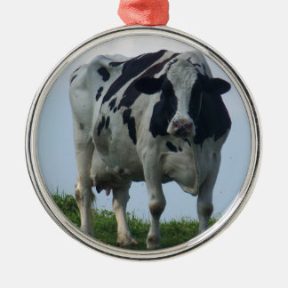 Vermont  Black and White Dairy Cow Metal Ornament