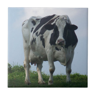 Vermont  Black and White Dairy Cow Tile