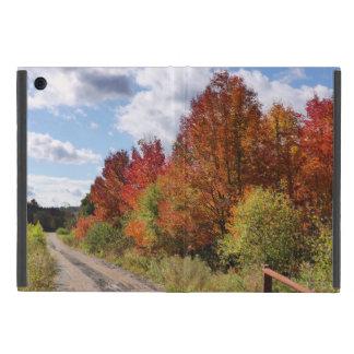 Vermont Country Lane Ipad case